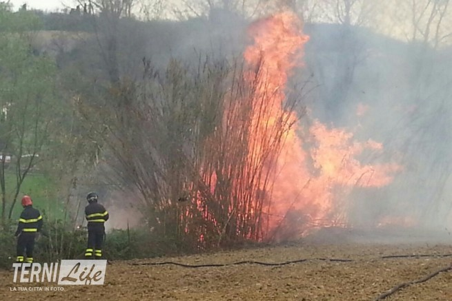 incendio 01-04-16