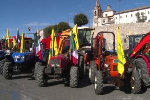 Raduno mezzi agricoli e industriali Amelia (1)