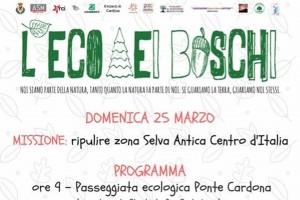 Bosco di Cardonaa