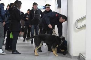 polizia_carabinieri_antidrogaSPR_8283