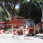 alberi_abbattuti_via_lungoneraSPR_4477