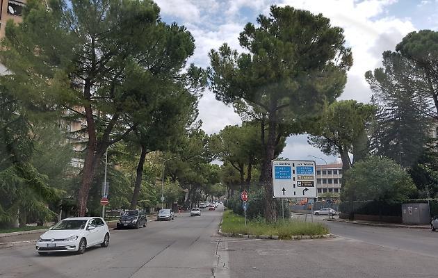 1555273016318.jpg--new_look_per_una_delle_vie_piu_transitate