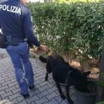 Controlli_Polizia_02_life