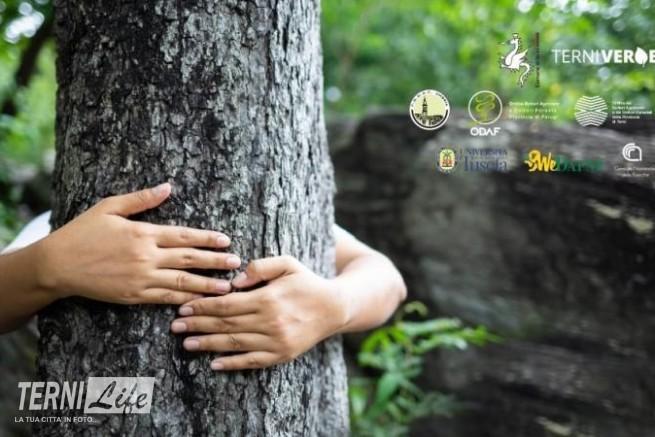 alberi_-_copia