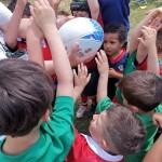 terni rugby under 6