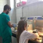 2019-Foto-AnatomiaPatologica-nuovi-lab (8)